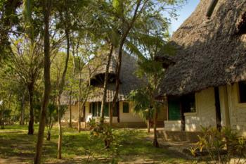 Forest Dream Eco Resort in Ukunda