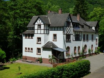 Wald Villa Üssbach Appartement 1 in Alf
