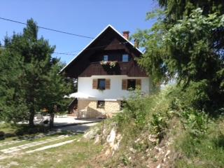 APARTMENT im Chalet Bohinj