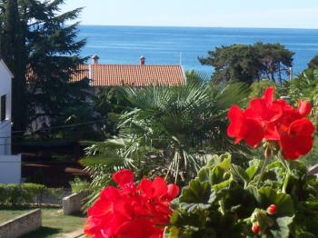 Apartments SANJA in Porec