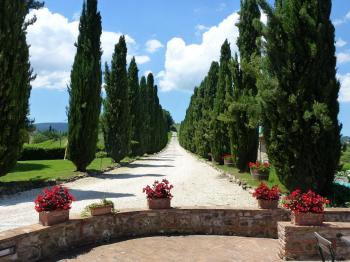 Bed & Breakfast Borgo Toscano in San Gimignano / Siena